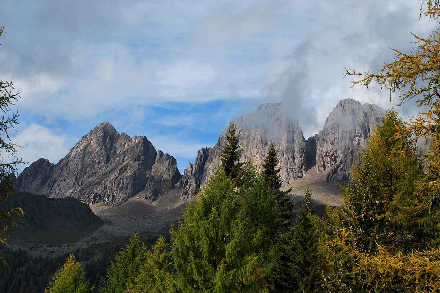 Paneveggio-Pale di San Martino Natural Park - Author: Viducoli