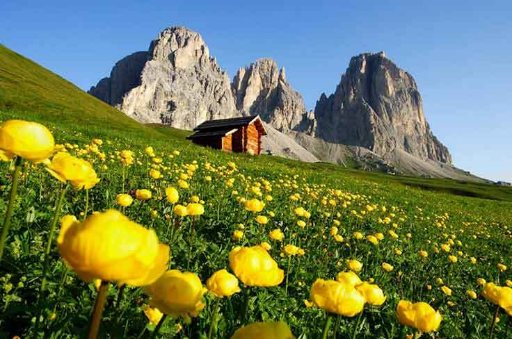 Discover Canazei and the spectacular Dolomites with the mountain guides of the Fassa Guide